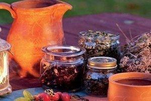 травы для лечения народными методами