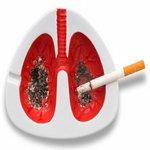 инсталяция действия сигареты на лёгкое