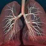 схема изменений в лёгком