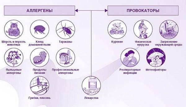 классификация причин бронхиальной астмы