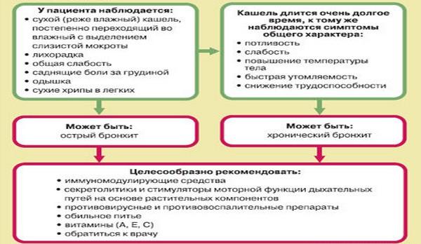 основные симптомы и лечения заболеваний бронхов