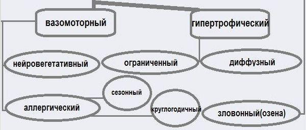 блок схема видов ринита