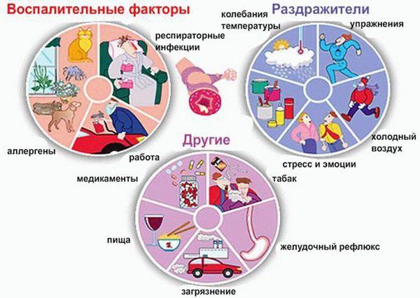 схема всех причин различных видов астмы