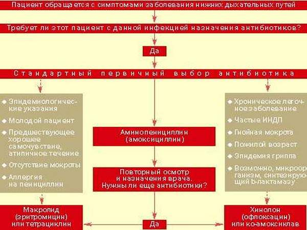 схема показаний к назначению антибиотиков