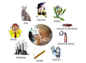 факторы вызывающие астму