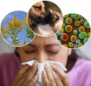 факторы вызывающие аллергию
