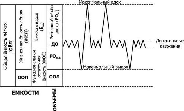 резульатат проведения оценки дыхательной функции лёгкого