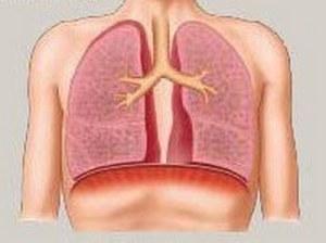 изменения в лёгком при появлении булл