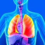 Пневмофиброз — симптомы и лечение