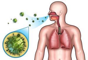 пневмобактерии