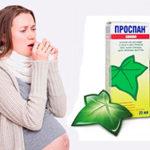 Можно ли принимать Проспан при беременности: обзор инструкции и отзывов о применении в различные триместры